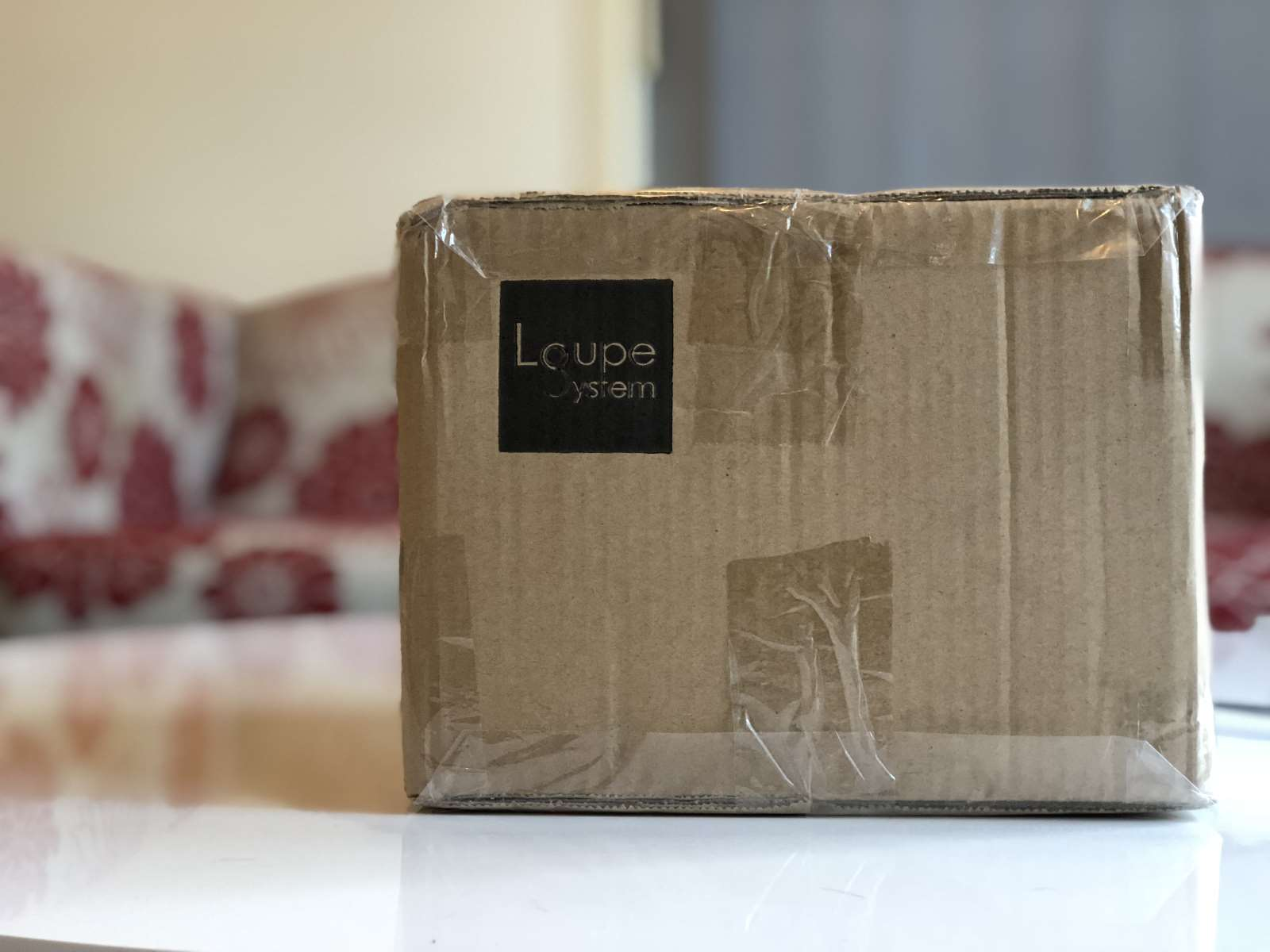 Loupe System Box